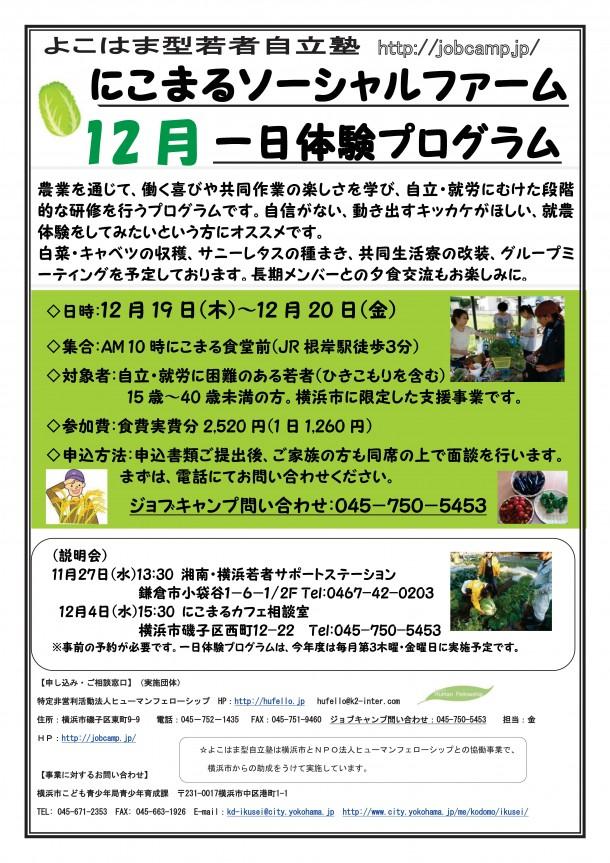 2013年12月ファーム合宿チラシ